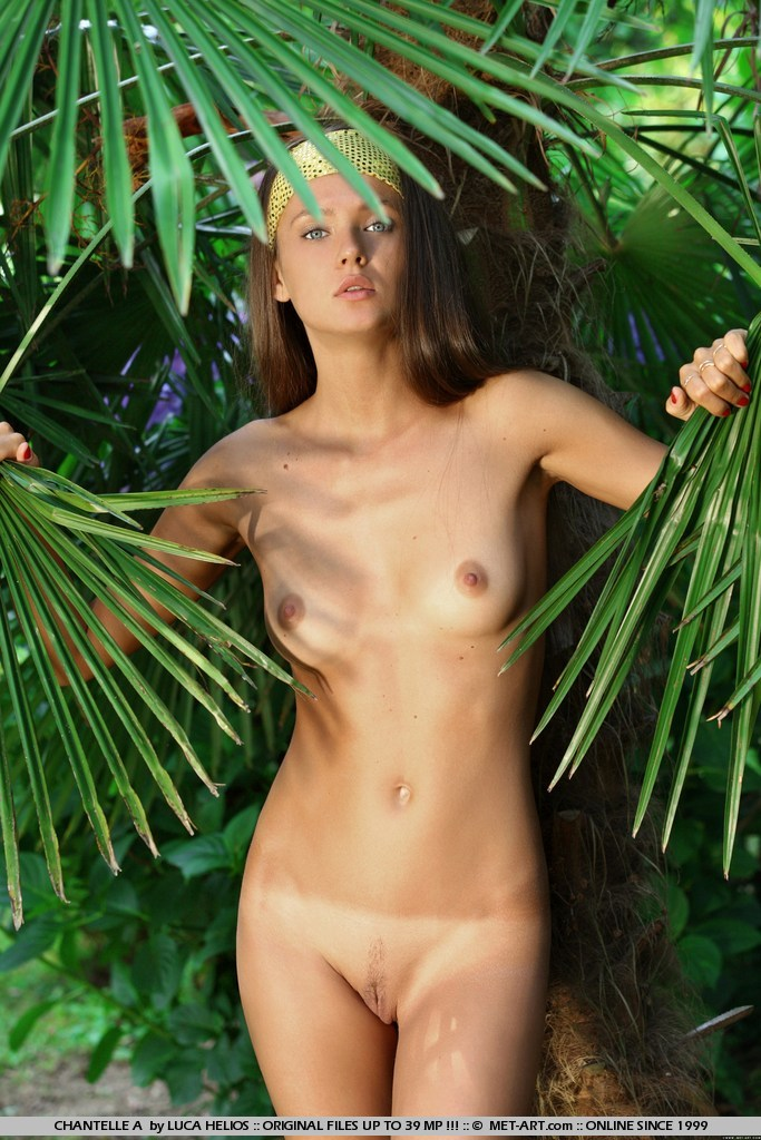 before-nude-girls-in-jungle-photo-ryan