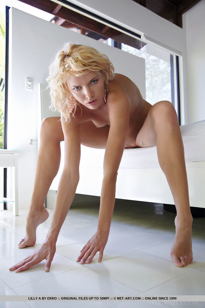 Lilly a met art nude