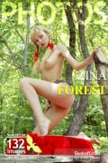 Forest: Zina #1 of 21